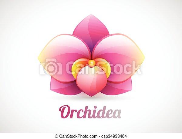 flower logo vector illustration - csp34933484
