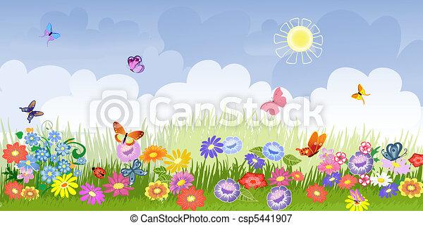 flower meadow panorama - csp5441907