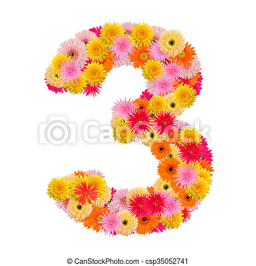 flower numberthree. Floral element of colorful alphabet made from gerbera - csp35052741