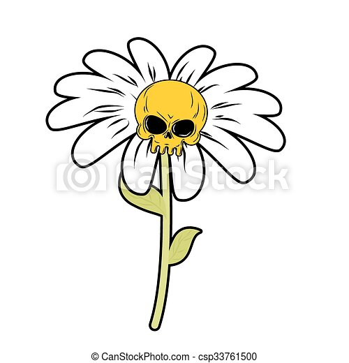 Flower of death chamomile with skull head skeleton with white flower of death chamomile with skull head skeleton with white petals fantastic plant mightylinksfo