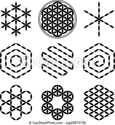 flower of life extracts eight extracted patterns from the flower of