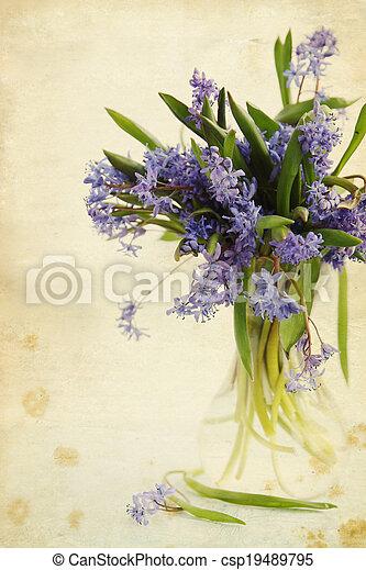 flower scilla in vase, vintage - csp19489795