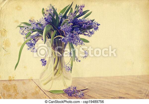 flower scilla, vintage - csp19489756