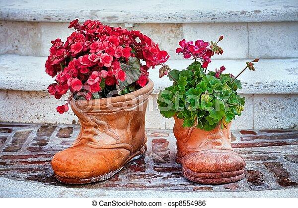 flower-shaped, fleurs, chaussures - csp8554986