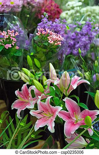 Flower shop - csp0235006
