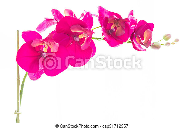Flower vase at window side decoration home - csp31712357