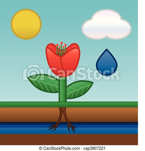 flower water absorbing - csp3907221
