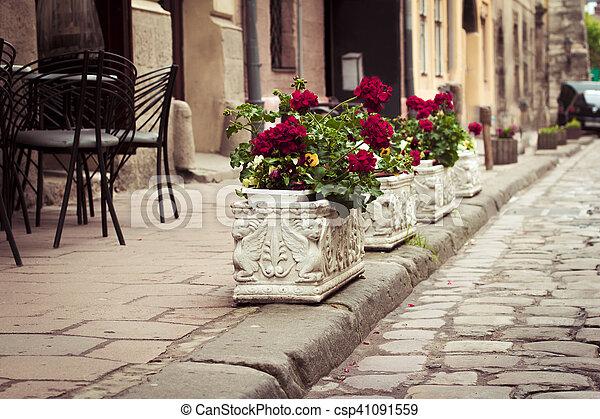 Flowerbeds in Lviv - csp41091559