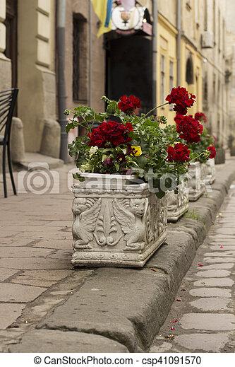 Flowerbeds in the city - csp41091570
