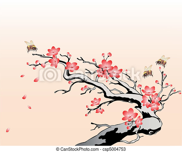 flowering cherry branch - csp5004753