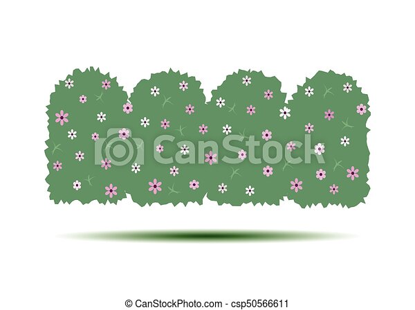 Flowering hedges. Green wall of vertical garden landscaping. Cartoon vector illustration isolated on white background. - csp50566611