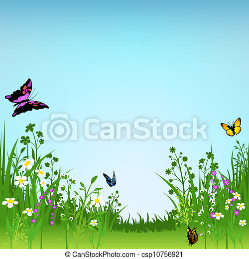 Flowering Meadow and Butterflies - csp10756921
