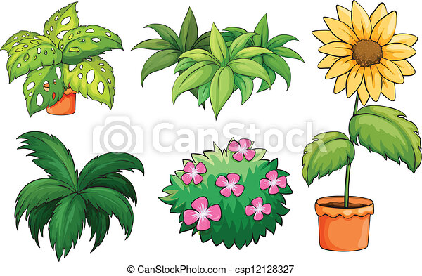 Flowerpots and plants - csp12128327