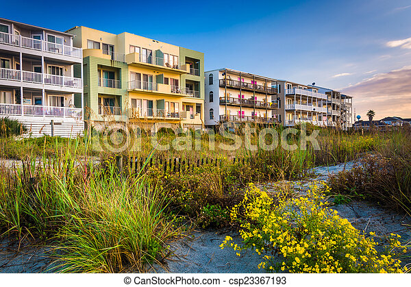 Flowers and beachfront buildings in Folly Beach, South Carolina. - csp23367193