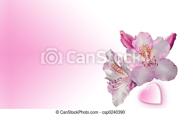 Flowers and heart - csp0240390