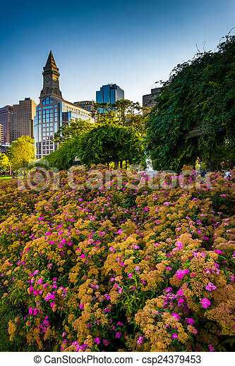 Flowers and the Custom House Tower in Boston, Massachusetts. - csp24379453