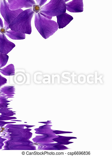 Flowers background reflecting in water - csp6696836
