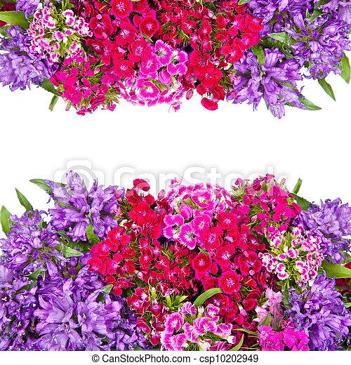 flowers background - csp10202949