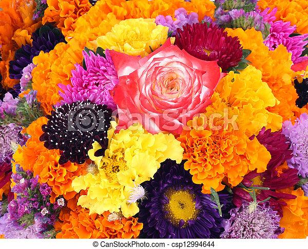 flowers background - csp12994644