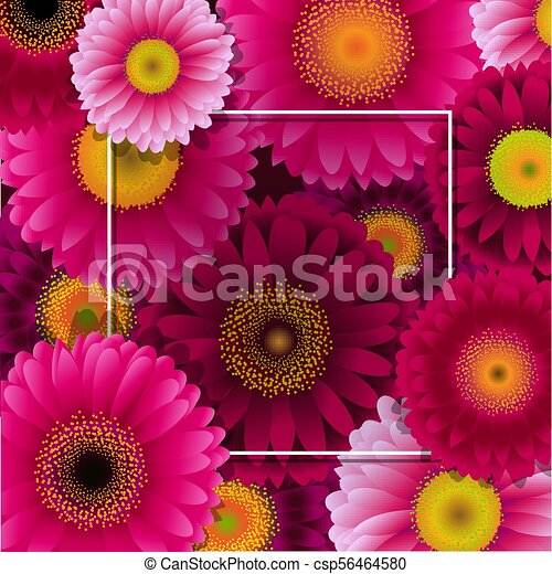 Flowers Border With Frame - csp56464580