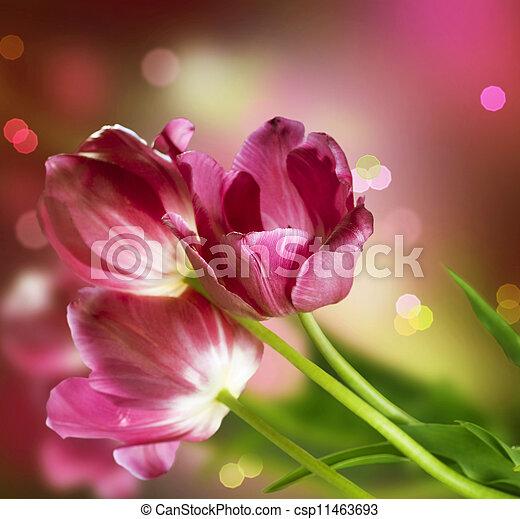 flowers., conception, carte anniversaire - csp11463693