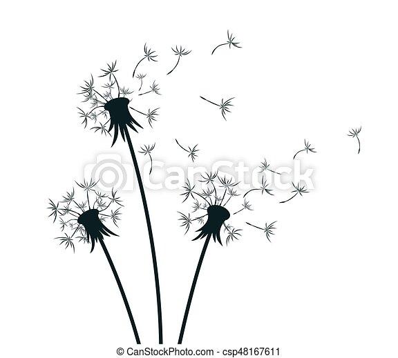 flowers dandelion drawing of flower of field dandelion vector rh canstockphoto com dandelion vector black and white dandelion vector free download