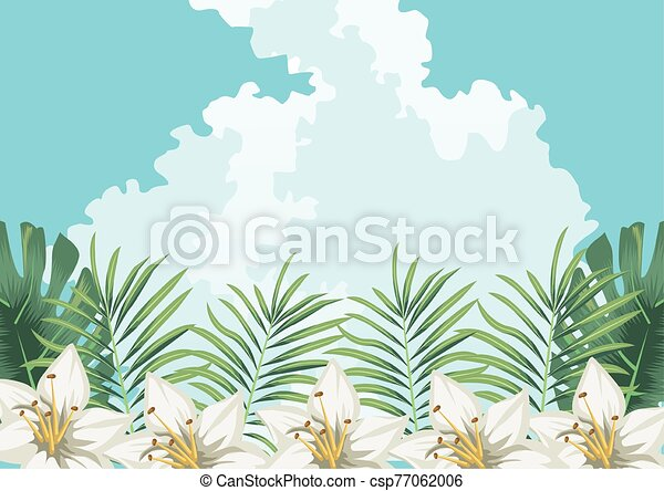 flowers exotic leaves sky clouds tropical background - csp77062006