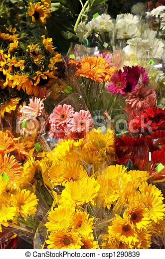 Flowers for sale - csp1290839