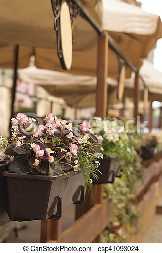 Flowers in a cafe on the terrace - csp41093024