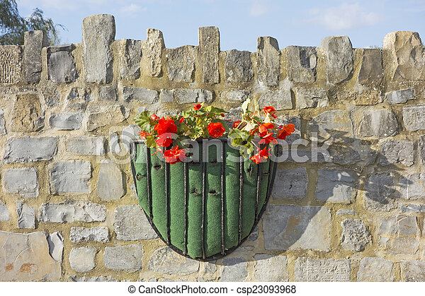Flowers in a hanging basket - csp23093968