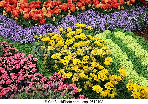 Flowers in garden - csp12812192