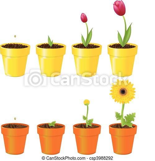 Flowers In Pots - csp3988292