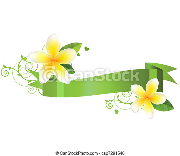 flowers isolated on white background - csp7291546