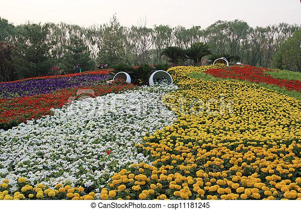 flowers landscape in a park - csp11181245