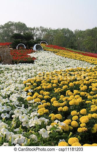 flowers landscape in a park - csp11181203