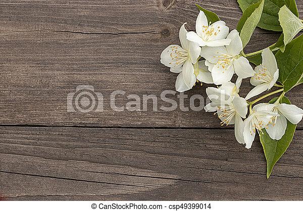 Flowers of jasmine on wooden background - csp49399014