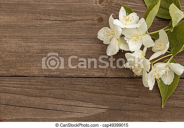 Flowers of jasmine on wooden background - csp49399015
