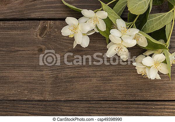 Flowers of jasmine on wooden background - csp49398990