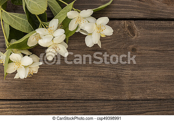Flowers of jasmine on wooden background - csp49398991