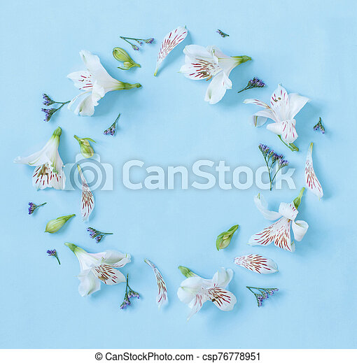 Flowers on a light blue background - csp76778951