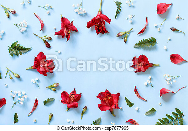 Flowers on a light blue background - csp76779651