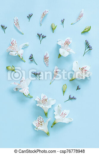 Flowers on a light blue background - csp76778948