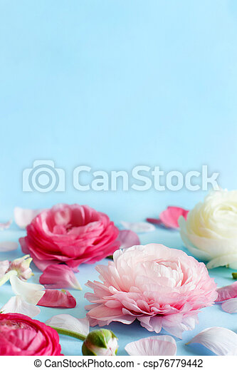 Flowers on a light blue background - csp76779442