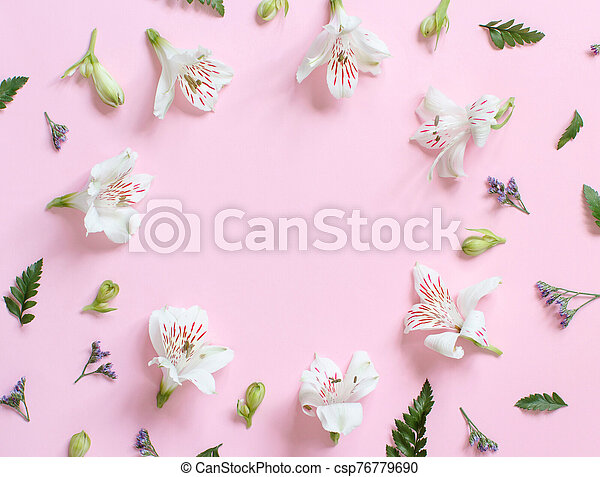 Flowers on a light pink background - csp76779690
