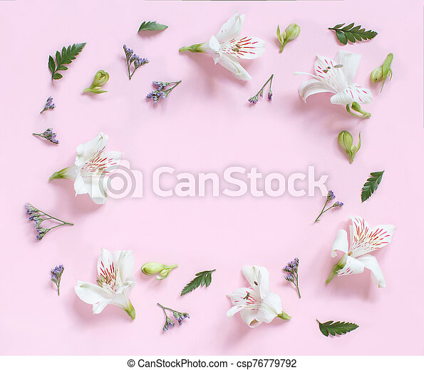 Flowers on a light pink background - csp76779792