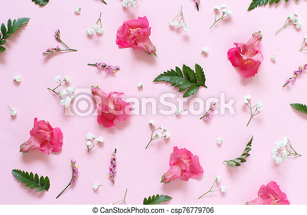 Flowers on a light pink background - csp76779706