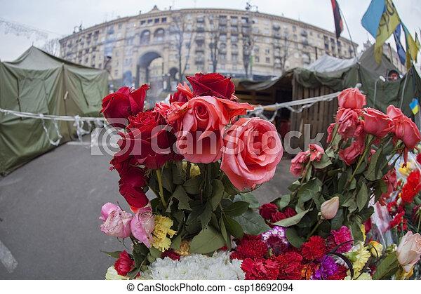 Flowers on barricades. - csp18692094