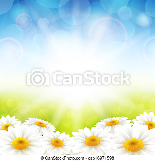 Flowers on the summer background - csp16971598