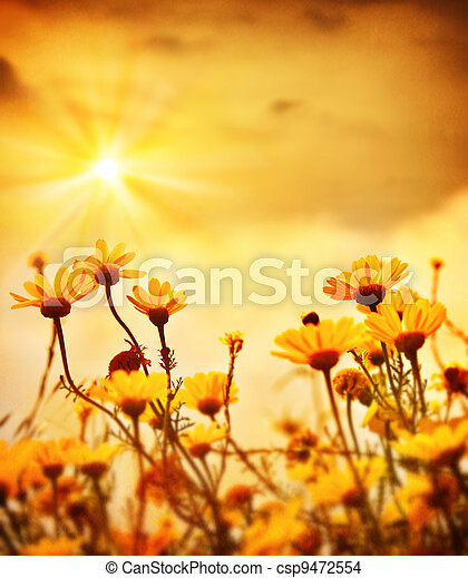 Flowers over warm sunset  - csp9472554