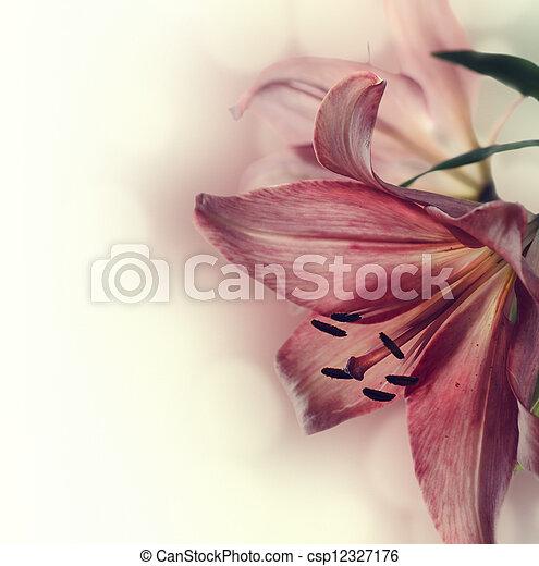 Flowers - csp12327176